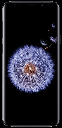 Total Wireless Samsung Galaxy S9